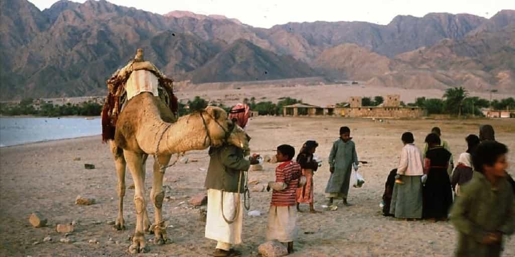 Bedouins Israel Minorities 2 Day Trip