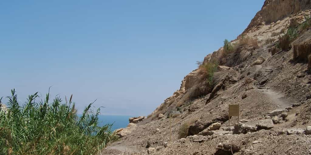 Ein-Gedi-outlook-of-Dead-Sea Hot and Now Tours in Israel