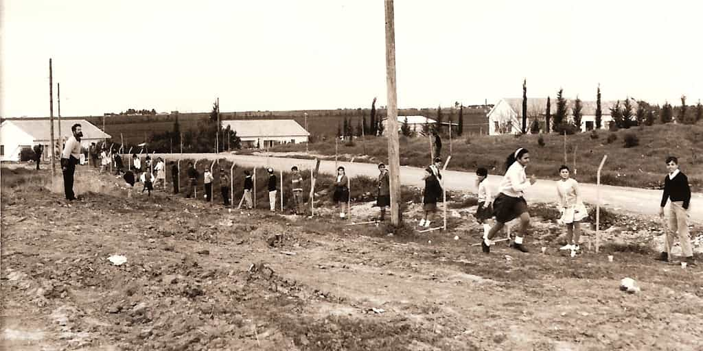 tree-planting-in-school 70 Years Since the UN Partition Plan Vote